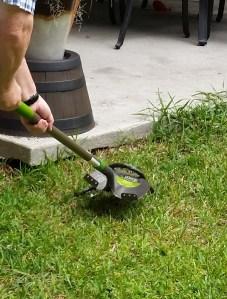 shovel snake