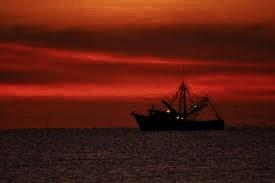 shrimp boats 2 (275x183)