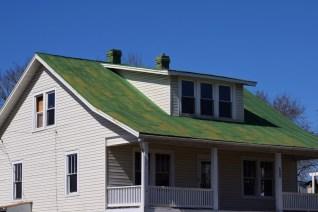 Spring Hill VA green roof