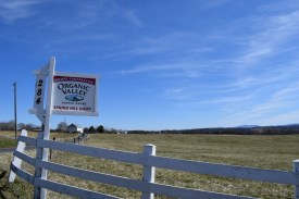 Spring Hill VA organic farm (1024x683)